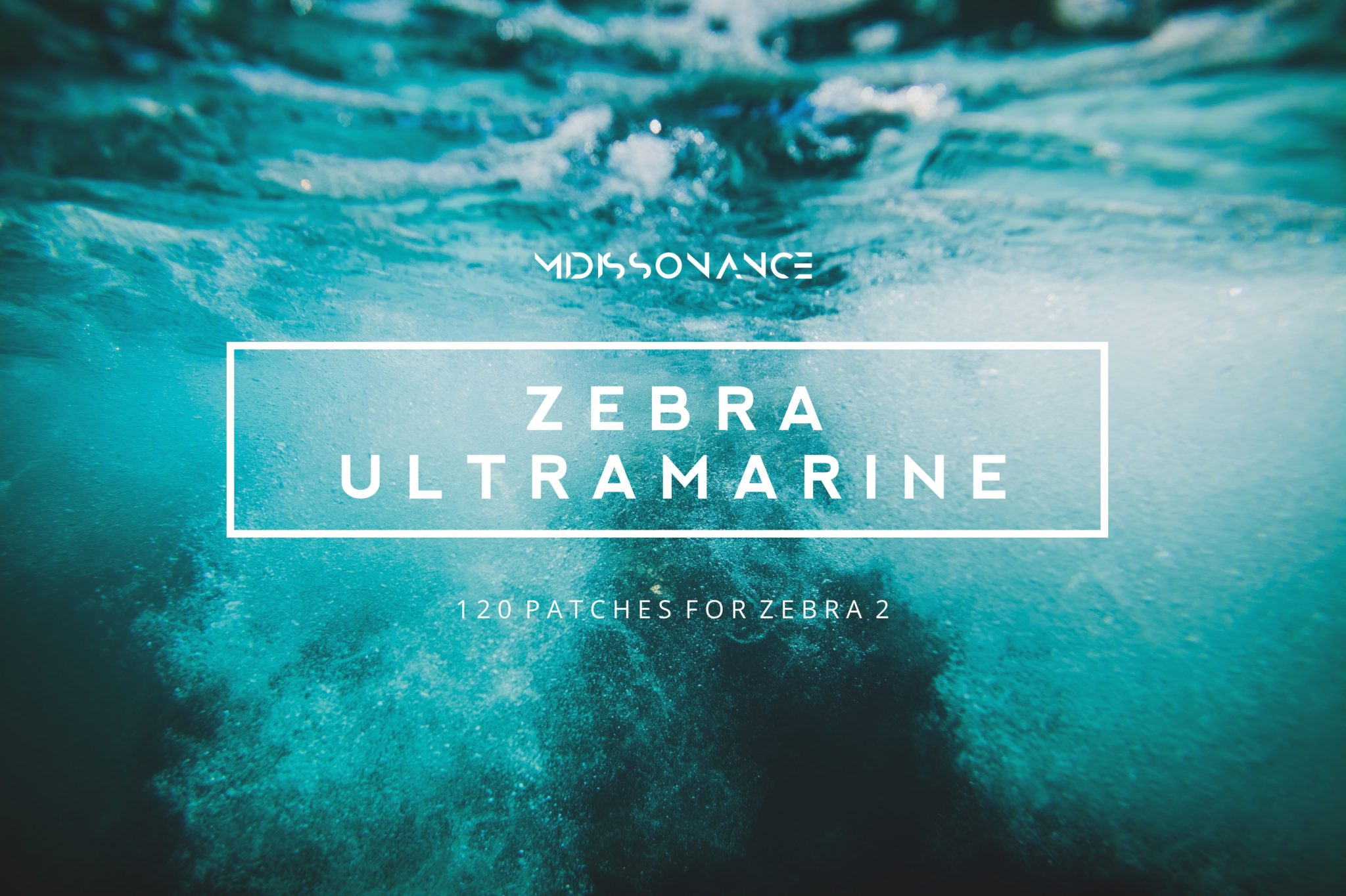 Zebra Ultramarine
